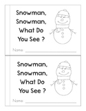 Snowman, Snowman, What Do You See?