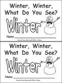Winter, Winter, What Do You See? Kindergarten Emergent Reader book