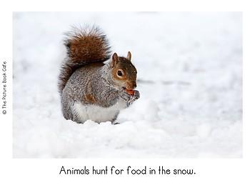 Snowy Days Classroom Emergent Reader