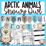 Snowy Owl Activities {Arctic Animals}