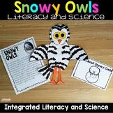 Snowy Owl Arctic Animals Nonfiction Unit