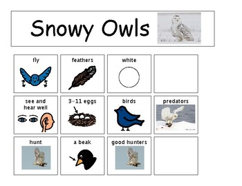 Snowy Owl Can Have Are Tree Map
