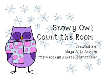 Snowy Owl Count the Room