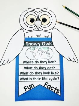 Snowy Owl Craft