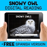 Snowy Owl Reading Comprehension for Google Classroom - Dis