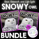 Snowy Owl Research and Life Cycle BUNDLE