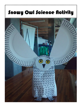 Snowy Owl Science Activity Craft