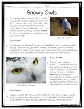 FSA/CCSS Snowy Owls Reading and Language/Editing Practice