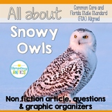 Reading Test Prep Snowy Owls Reading and Language Practice   Distance Learning