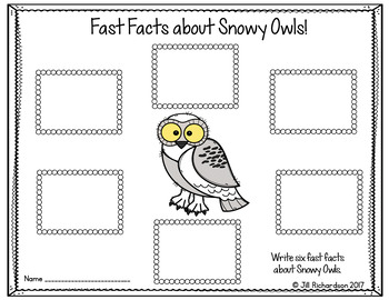 Snowy Owls Writing Flap Books!