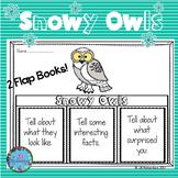 Winter Writing Snowy Owls Writing Flap Books! ESL