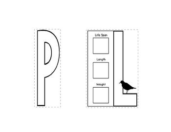 Snowy Plover Webquest Layered Book