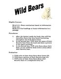 Soar To Success Wild Bears