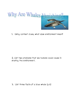 Soar to Success Why Are Whales Vanishing?