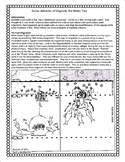 Social Behavior of Daphnia, the Water Flea