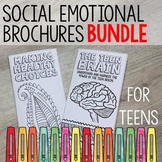 Social Emotional Learning Brochures for Teens