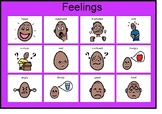 Social Emotional (feelings) matching Board!