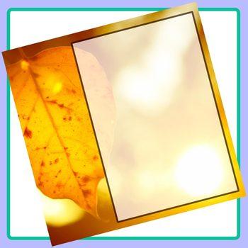 Social Media Image Templates - Instagram, Facebook, etc - Pictures Copy Space 10