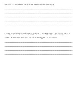 Social Studies Alive! Chapter 4 Short Answer Questions