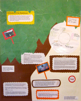 Social Studies Projects (Brazil)