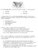 Social Studies Quiz-The Age of Discovery & First Settlements