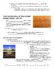 Social Studies USI.7b Historical Developments of the Const