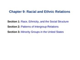 Sociology: Chp  9 Racial and Ethnic relations ppt
