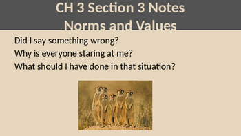 Sociology Norms and Values Notes