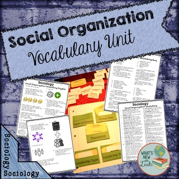 Sociology Social Organization Vocabulary Unit