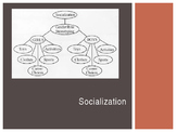 Sociology: Socialization PowerPoint