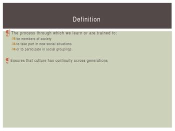 Sociology: Socialization PowerPoint