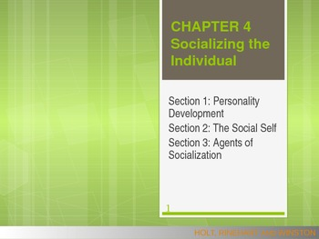Sociology: Socializing the Individual PowerPoint