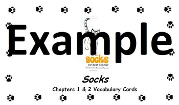 Socks Chapters 1 & 2 Vocabulary Cards and Practice Sheet