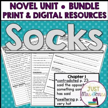 Socks Novel Unit