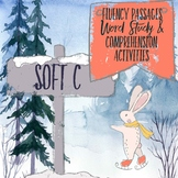 Soft C Fluency Passages Word Study and Comprehension Activities