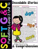 Soft C & G Reading Passages & Comprehension Distance Learning Google Third Grade