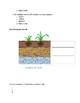 Soil - A Natural Resource Test
