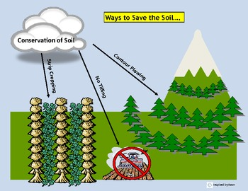 Soil Conservation & Soil Life Visual Tools/Flashcards for Autism
