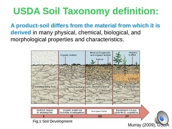Soil Forming Processes