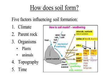 Soil Fundamentals by AP Science Empowerment | Teachers Pay ...