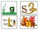 Soil Horizon Project and Bulletin Board Printables