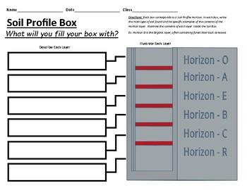 Soil Horizons Profile Describe and Illustrate