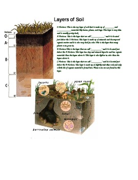 Soil Layers Assessment
