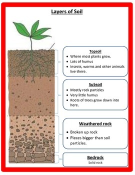 Soil POWERPOINT WITH NOTES - 3rd Science