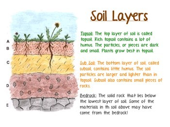 Soil Profile Descriptions