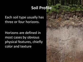 Soil Profile Experiment
