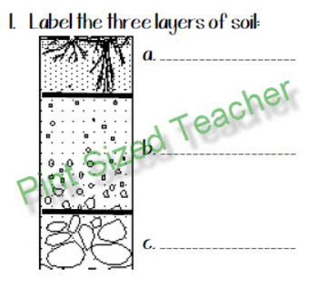 Soil Review Sheet