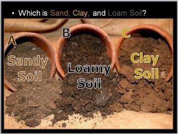 Soil Science Unit