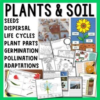 Plants and Soil Unit