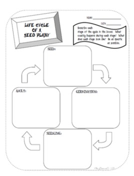 Soil and Plant Interactive Activity Sheets